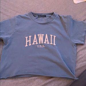 Brandy Melville Tops - brandy melville hawaii crop tshirt